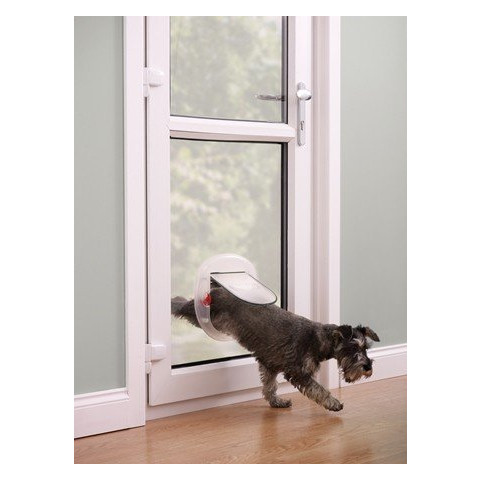 Staywell Big Cat Small Dog 270 4 Way Pet Door In Frosted