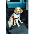 The Company Of Animals Clix Universal Seatbelt Restraint For Dogs
