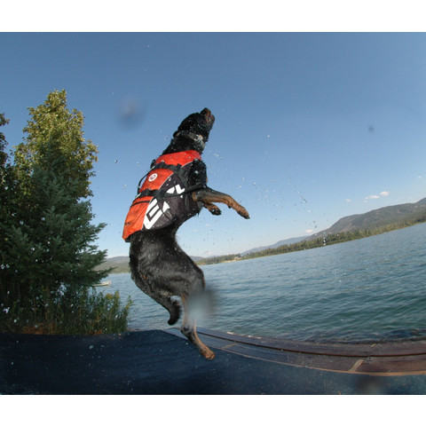 Ezy Dog Dog Floatation Life Jacket In Red Small