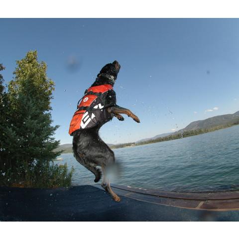 Ezy Dog Dog Floatation Life Jacket In Yellow Medium