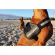 Ezy Dog Convert Utility Dog Harness In Burgundy Small