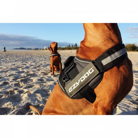 Ezy Dog Convert Utility Dog Harness In Burgundy Large