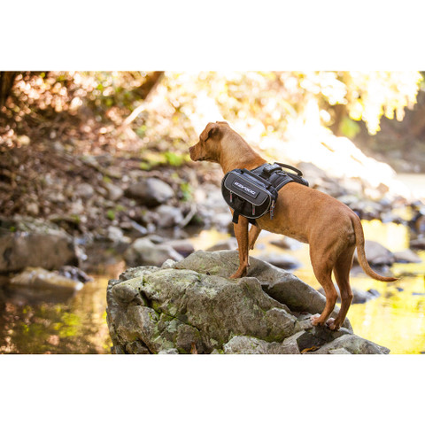 Ezy Dog Convert Saddle Bag Dog Backpack Harness Adapter Large