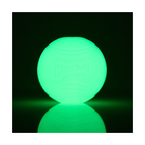 Chuckit! Max Glow Ball High Visibility Dog Toy Medium