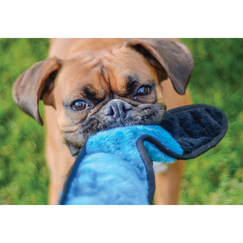 Ancol Super Snake Tough Dog Toy  To 6 X
