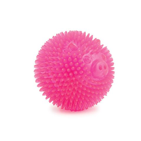 Ancol Flashing Star Ball Pig Dog Toy Small