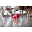 Kong Bounzer Dog Toy Medium