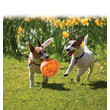 Kong Jumbler Ball 2in1 Dog Toy Med/large