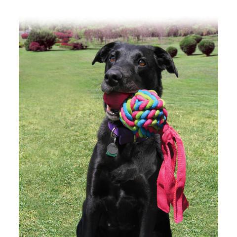 Kong Wubba Weaves Dog Toy Large