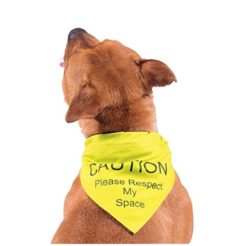 "Ancol ""caution Please Respect My Space"" Yellow Warning Bandana Small/med"