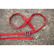 Gencon All-in-one Clip To Collar Red Head Collar And Lead