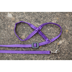 Gencon All-in-one Clip To Collar Purple Head Collar And Lead