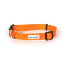 Doodlebone Orange Adjustable Dog Collar Small
