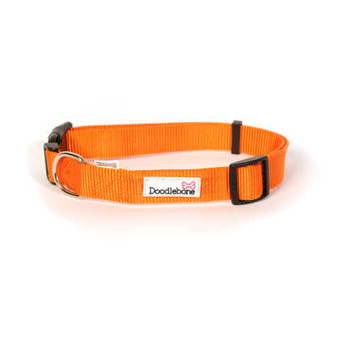 (d)doodlebone Orange Adjustable Dog Collar Small