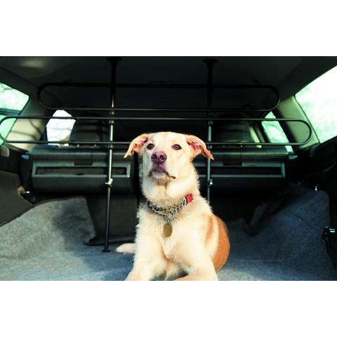 Mountney Universal Car Dog Guard Standard
