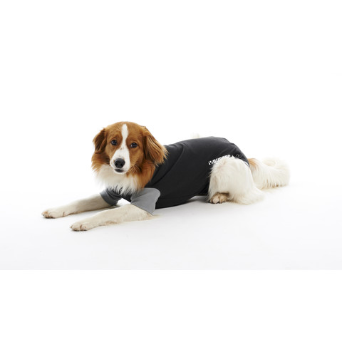 Kruuse Buster Veterinary Body Suit For Dogs Xxs