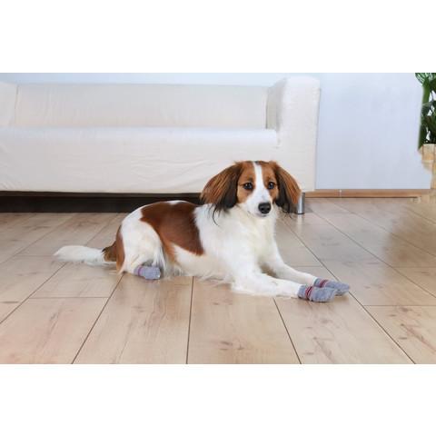 Trixie Non-slip Dog Socks Xs-s