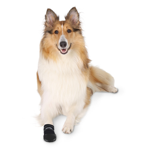 Trixie Walker Protective Care Dog Boots Medium