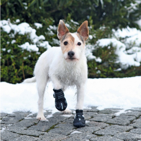 Trixie Walker Protective Active Dog Boots S-m