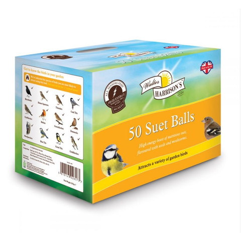 Walter Harrisons Wild Bird Suet Balls With Mealworms - No Nets 50 Pack
