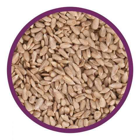 Walter Harrisons Wild Bird Sunflower Hearts 2kg