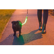 Ancol High Visibility Safety Dog Lead Attachment