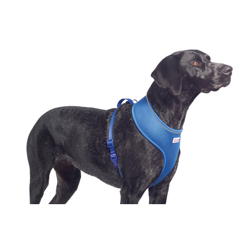 Ancol Comfort Fit Mesh Dog Harness In Blue Small