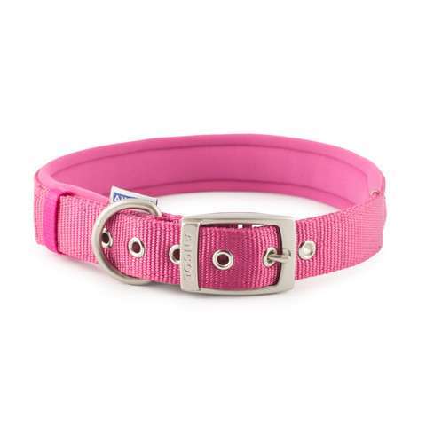 Ancol Heritage Padded Nylon Raspberry Buckle Dog Collar Medium