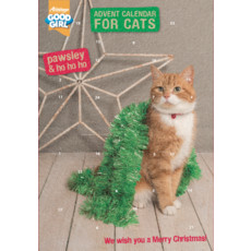 Armitage Pawsley Christmas Cat Advent Calendar