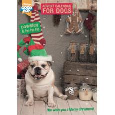 Armitage Christmas Dog Advent Calendar
