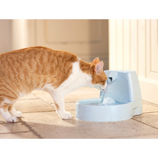 Petsafe Drinkwell Original Pet Water Fountain 1.5 Litre