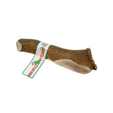 Deer Antler Natural Dog Chew X Large