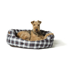 Danish Design Lumberjack White & Navy Deluxe Slumber Dog Bed 45cm