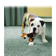 Kong Tennishoes Tiger Dog Toy Small