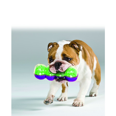 Kong Sqrunch Dumbell Dog Toy Large