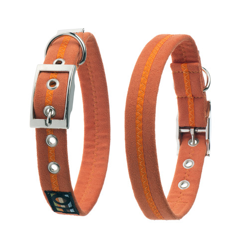 Oscar & Hooch Suedette Clementine Buckle Dog Collar X Small To Large
