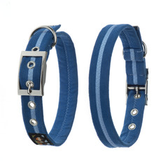 Oscar & Hooch Suedette Royal Blue Buckle Dog Collar X Small To Large