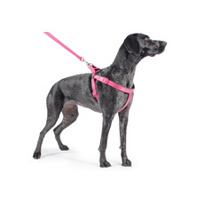 Ancol Nylon Padded Exercise Raspberry Pink Dog Harness Small To X Large