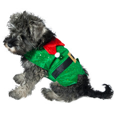 Dog Life Christmas Elf Coat Dress Up For Dogs Small