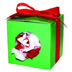 Happy Pet Christmas Present Playbox Small Animal Toy