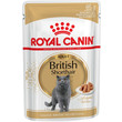 Royal Canin British Shorthair Adult Cat Food In Gravy Pouches 12 X 85g