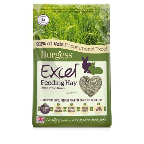 Burgess Excel Dried Forage Feeding Hay 1kg