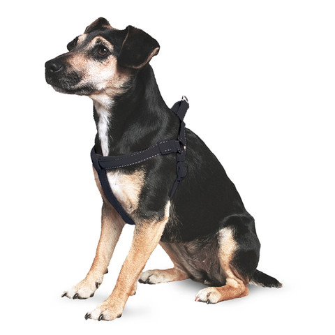 Ancol Nylon Padded Black Dog Harness Small To X Large