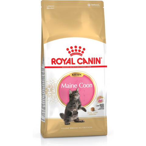 Royal Canin Maine Coon Kitten Food 4kg To 10kg
