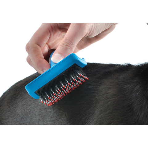 Ancol Ergo Hedgehog Soft Slicker Dog Brush Medium