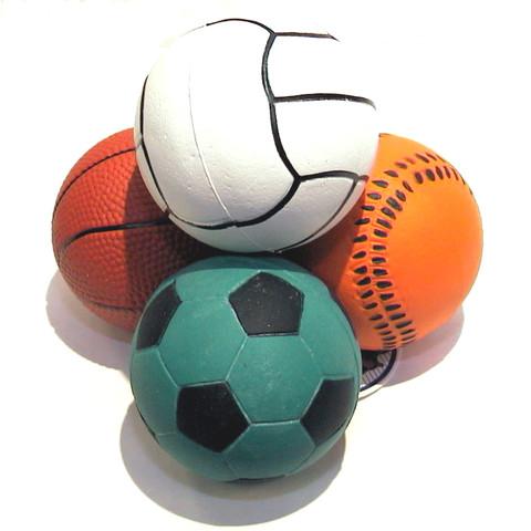 Sports Ball Dog Toy