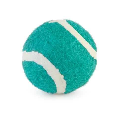 Small Bite Dog Tennis Ball 6 Pack