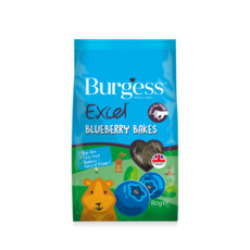 Burgess Excel Blueberry Bakes Treats 80g