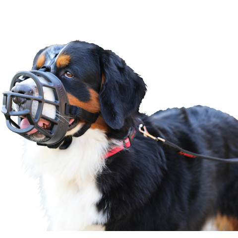The Company Of Animals Baskerville Ultra Dog Muzzle Size 6