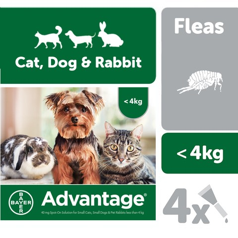 Advantage 40mg Spot-on Solution For Small Cats, Small Dogs And Pet Rabbits Up To 4kg 4 Pipette